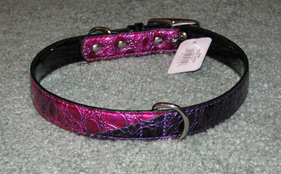 Back view of dog collar