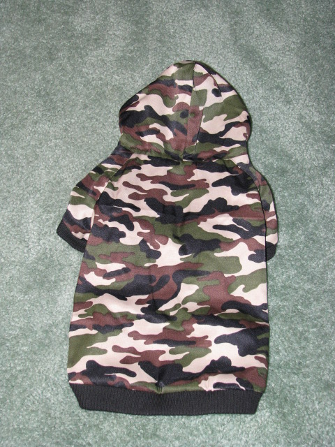 Back view of Camo Hoodie